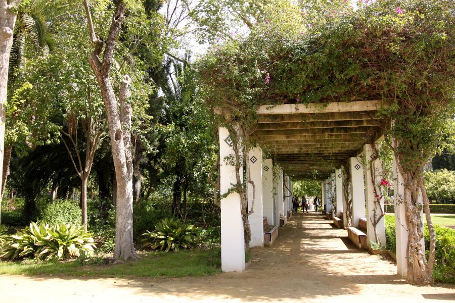 Park Marii Luizy Sewilla