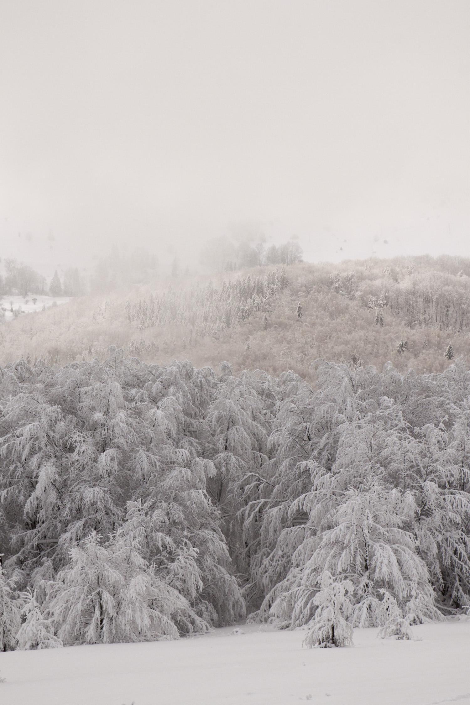 Bieszczady zima