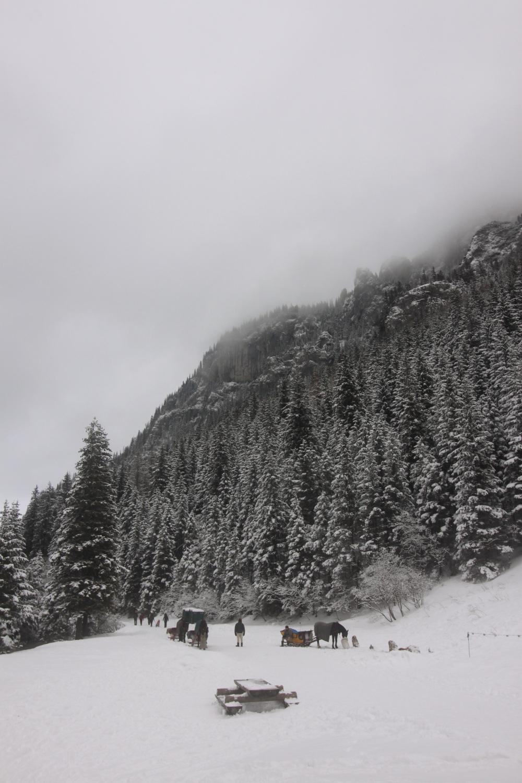 Dolina Kościeliska zima Tatry Polana Pisana