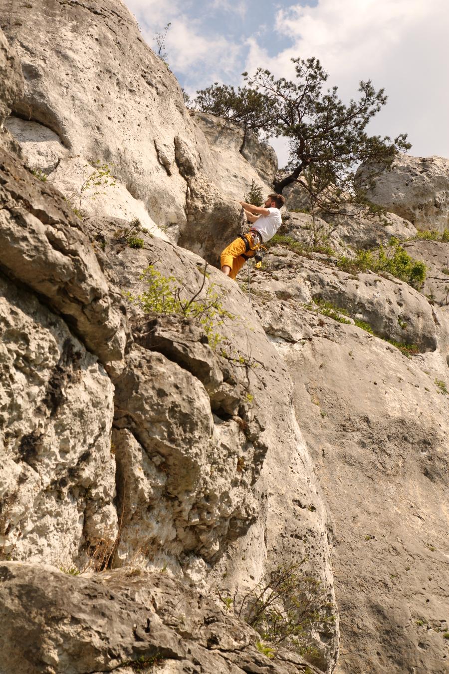 Podlesice Jura wspinanie