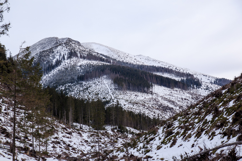 Dolina Chochołowska zima