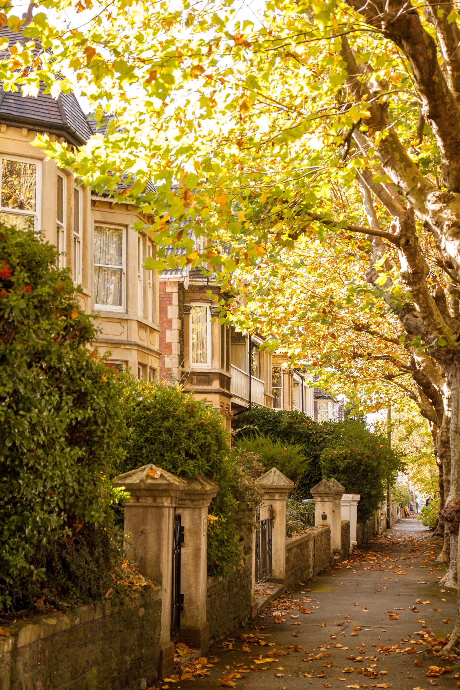 Bristol ulice domy szeregowe